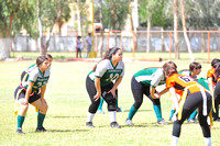 Halcones vs Borregas copa halcones secundaria 2014
