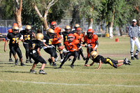 Final Halcones vs Zorros